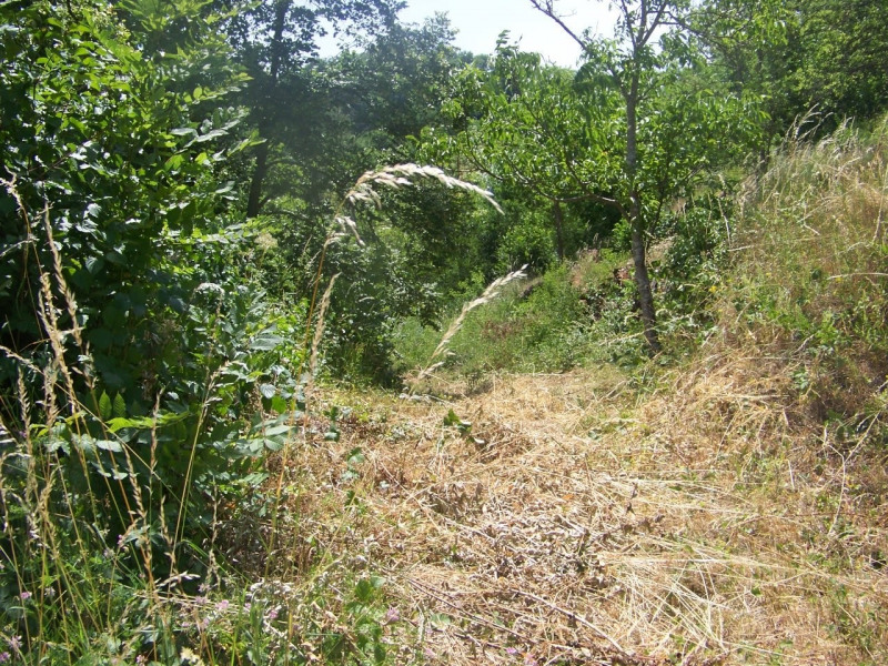 Vente terrain Ceyssac 53000€ - Photo 3