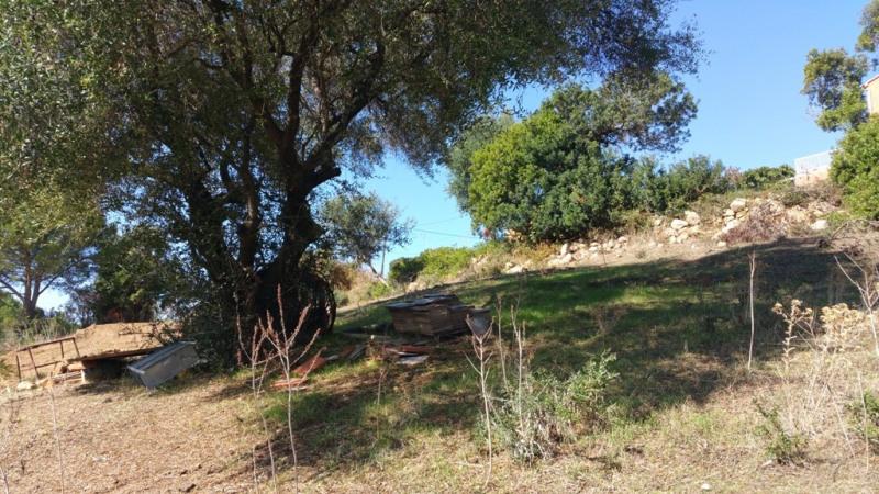 Sale site Pietrosella 136250€ - Picture 5