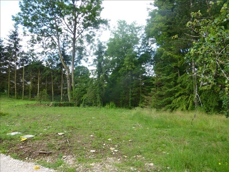 Vente terrain Mamirolle 80000€ - Photo 1