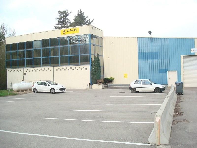 Location Bureau Crémieu 0