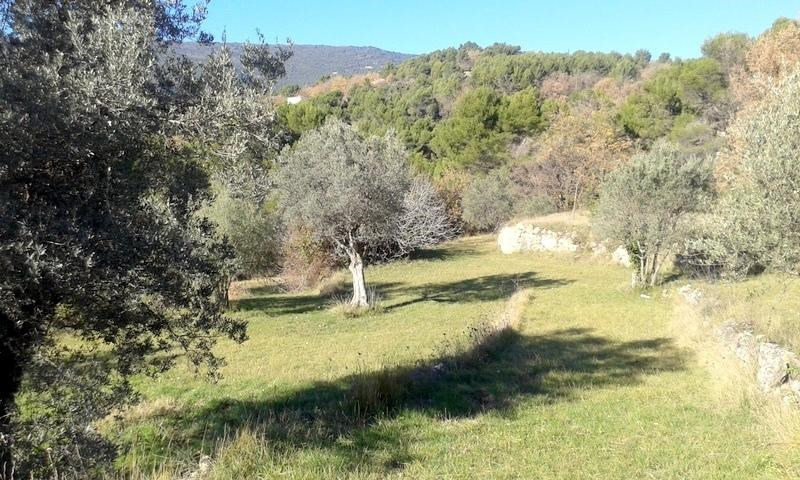 Sale site Fayence 222000€ - Picture 4