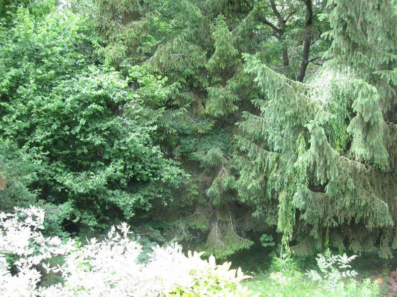 Vente terrain Beauvais 127000€ - Photo 2