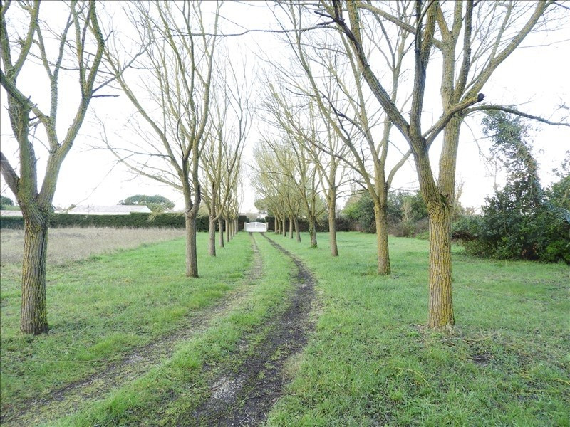 Vente maison / villa St pierre d oleron 376 000€ - Photo 3