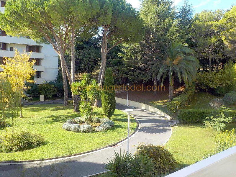 Life annuity apartment Antibes 52 000€ - Picture 1
