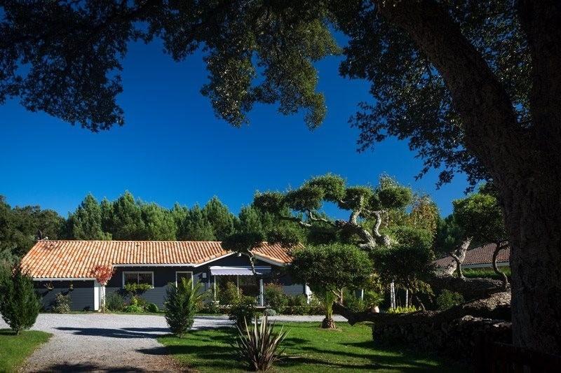 Sale house / villa Moliets et maa 518000€ - Picture 1