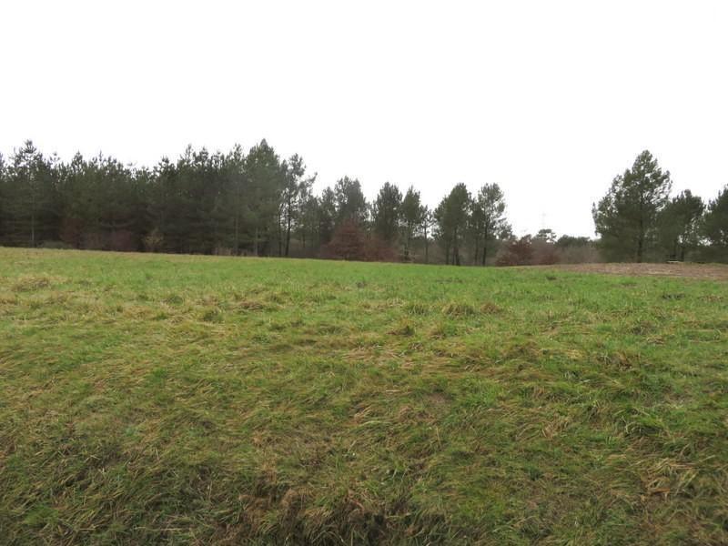 Vente terrain St remy 45000€ - Photo 1