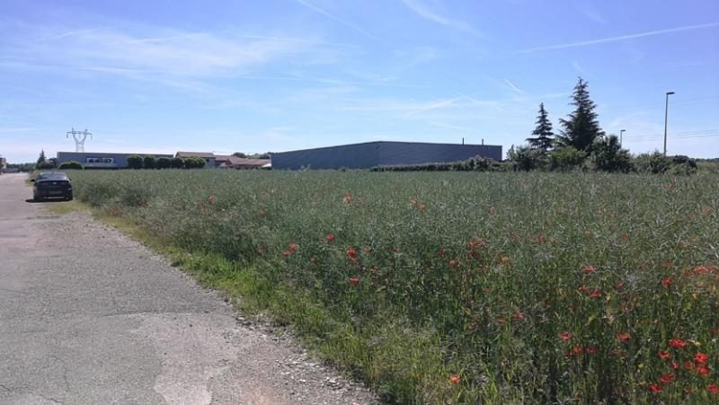 Sale site Villette d anthon 290000€ - Picture 1