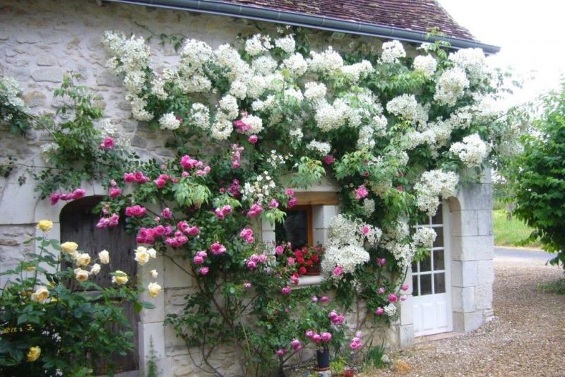 Sale house / villa Saint-quentin-sur-indrois 252000€ - Picture 5
