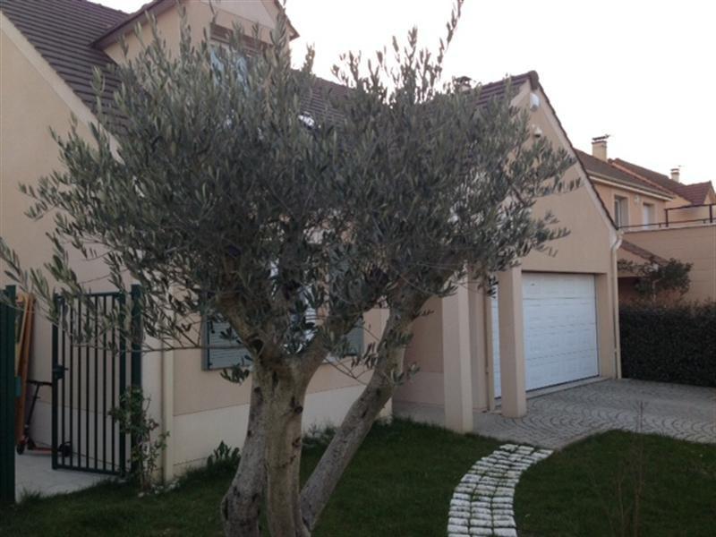 Sale house / villa Vigneux sur seine 494000€ - Picture 3