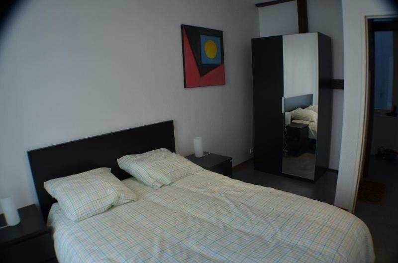 Location vacances appartement Strasbourg 600€ - Photo 8