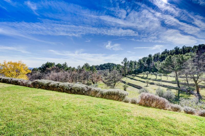 Immobile residenziali di prestigio casa Fayence 2700000€ - Fotografia 41