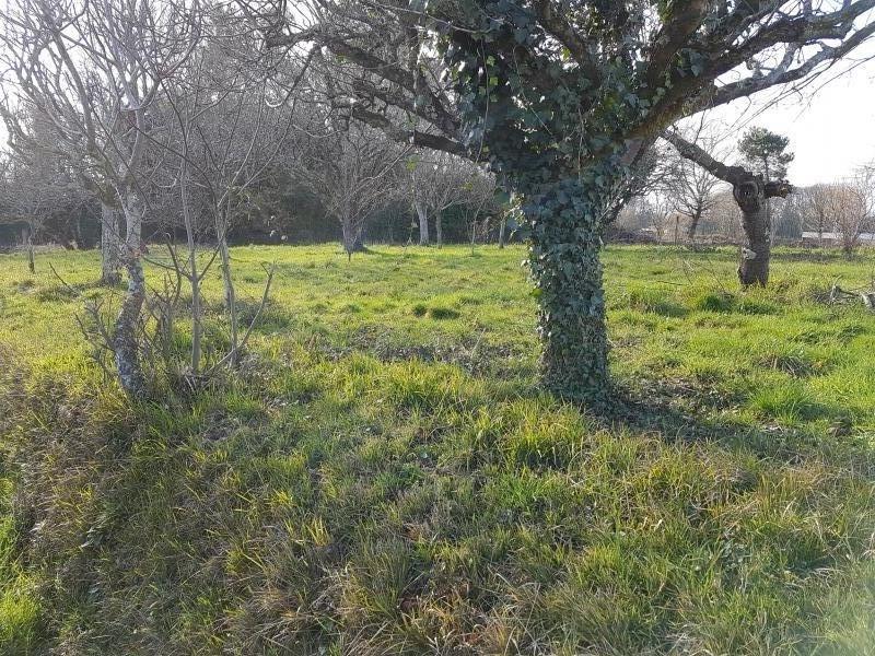 Vente terrain Hagetmau 38500€ - Photo 3
