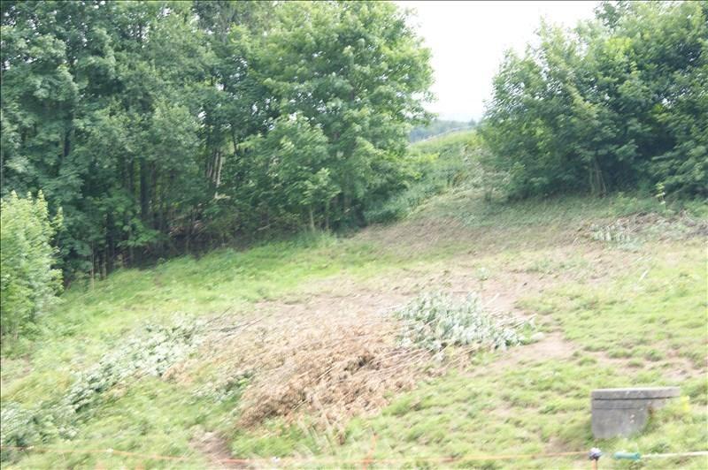 Vente terrain Mont saxonnex 106000€ - Photo 1