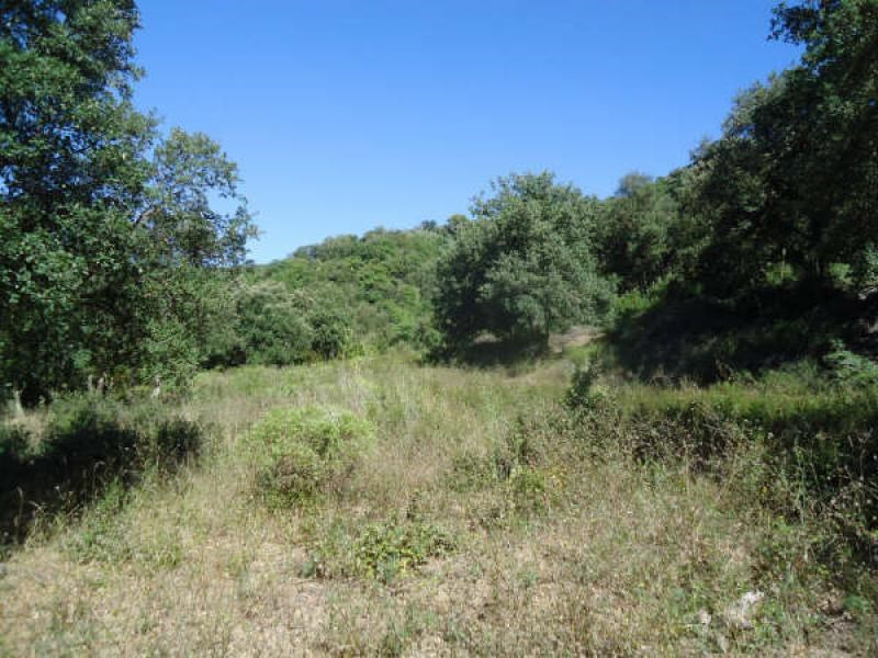 Vente terrain Reynes 120 000€ - Photo 8