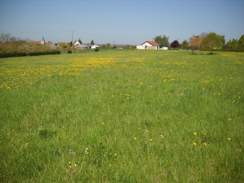 Vente terrain Falaise 10 mns sud 30500€ - Photo 1