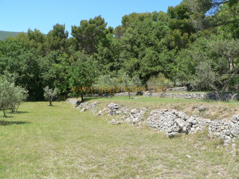 Vente terrain Fayence 286 200€ - Photo 3