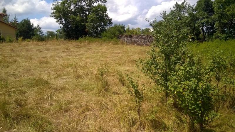 Vente terrain St paulien 49400€ - Photo 1