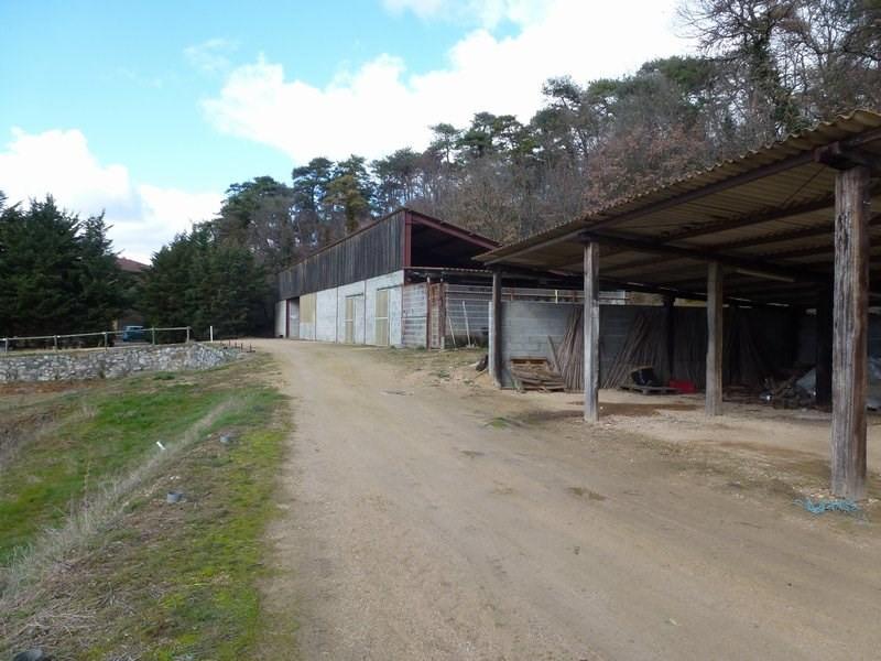 Vente maison / villa Chateauneuf de galaure 400000€ - Photo 18