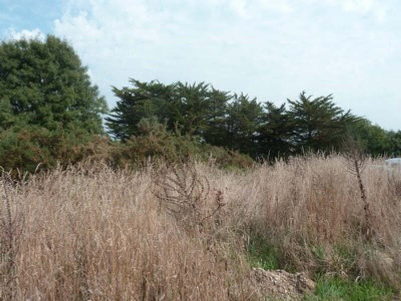Sale site Locoal mendon 108 000€ - Picture 3