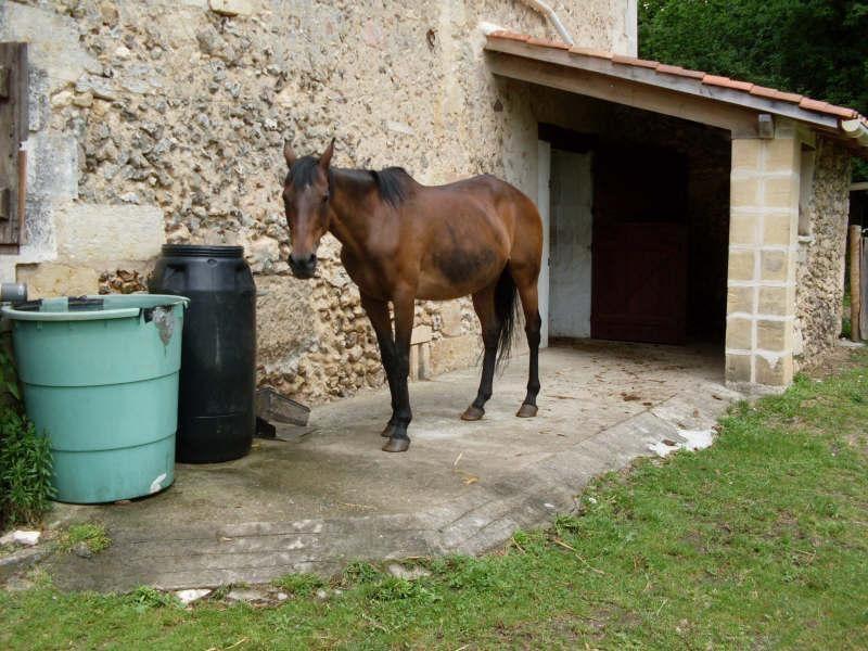 Vente maison / villa Perigueux 352000€ - Photo 9