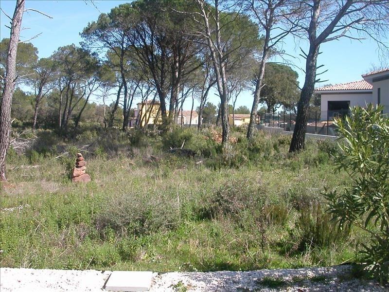 Vente terrain Le cannet des maures 148000€ - Photo 1