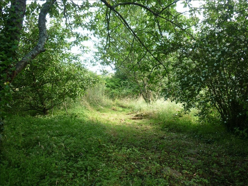 Vente terrain Tourouvre 14500€ - Photo 1