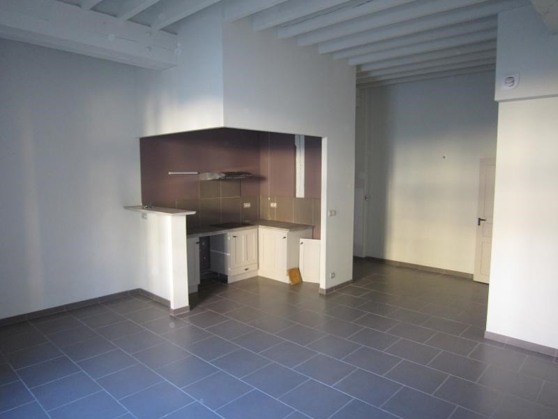 Rental apartment Saint-cyprien 490€ CC - Picture 1