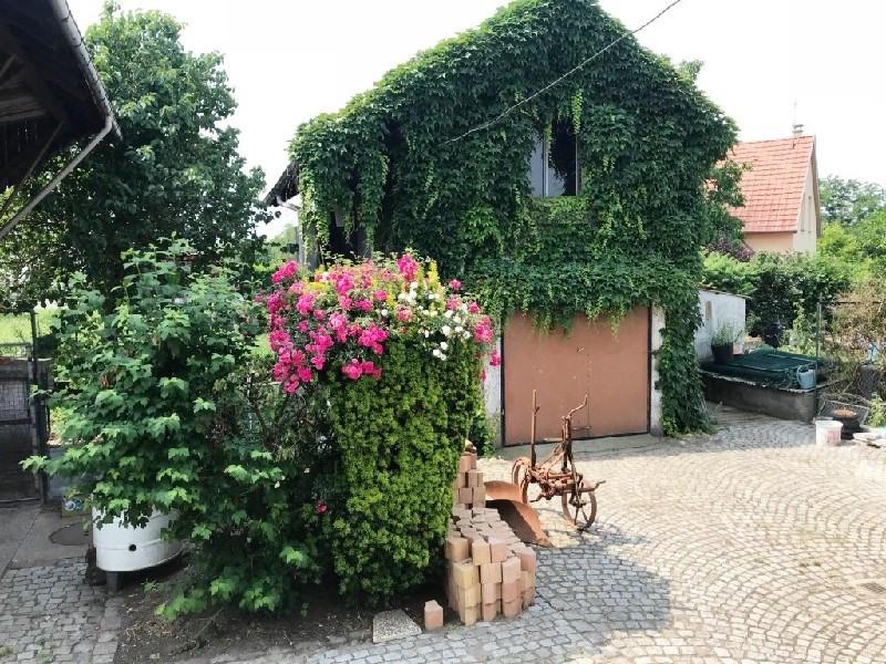 Revenda casa Colmar 217330€ - Fotografia 3