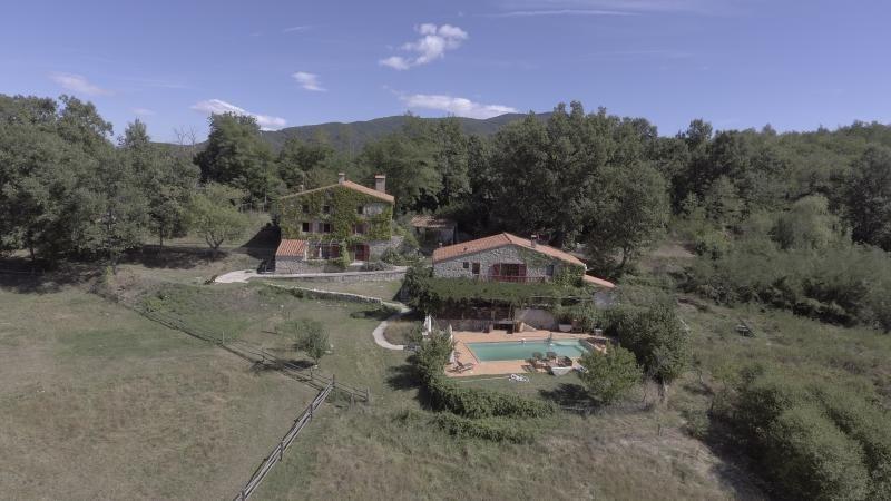 Deluxe sale house / villa St laurent de cerdans 990000€ - Picture 2
