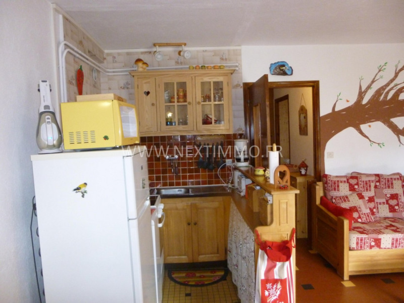 Vente appartement Valdeblore 89000€ - Photo 9