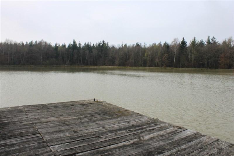 Verkoop  stukken grond Arzay 215000€ - Foto 8