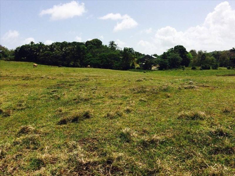 Vente terrain Ste anne 200000€ - Photo 2