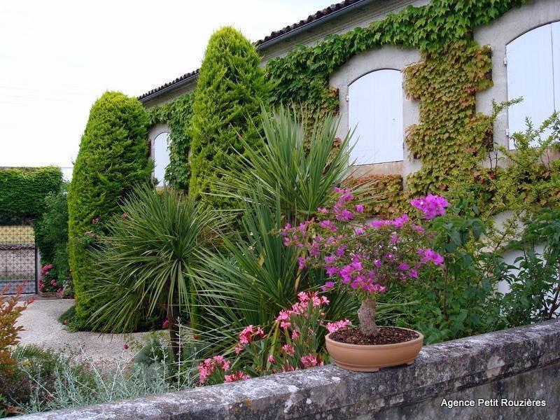 Vente maison / villa Cognac 395000€ - Photo 9