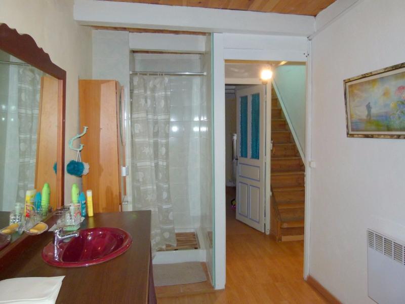 Vente maison / villa Allegre 65000€ - Photo 13