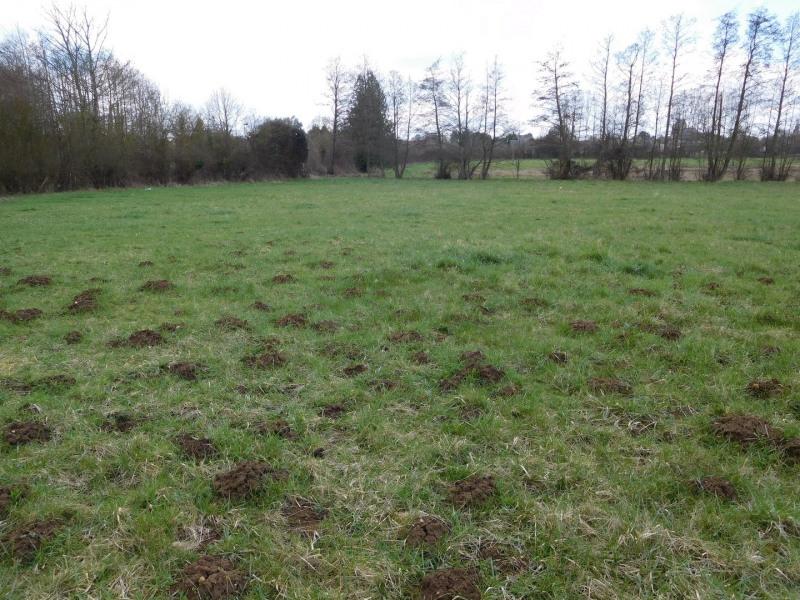 Vente terrain Potigny 5 mns 47500€ - Photo 1