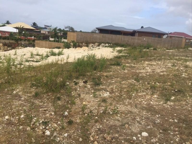 Vente terrain Ste anne 235000€ - Photo 3
