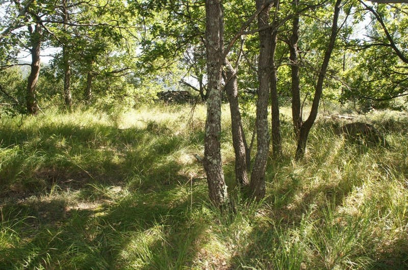 Vente terrain Vesseaux 87 000€ - Photo 3