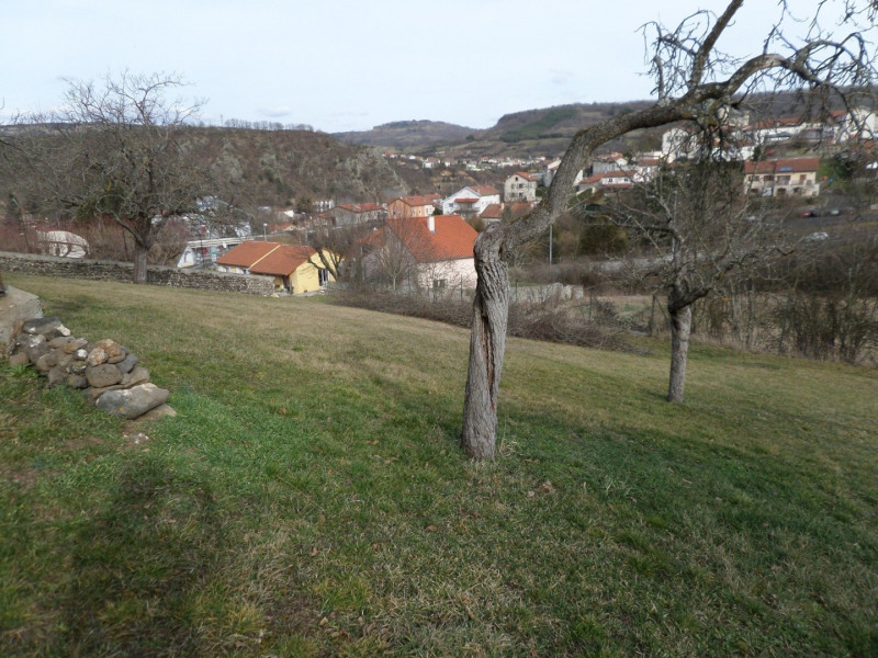 Vente terrain Chadrac 89100€ - Photo 6