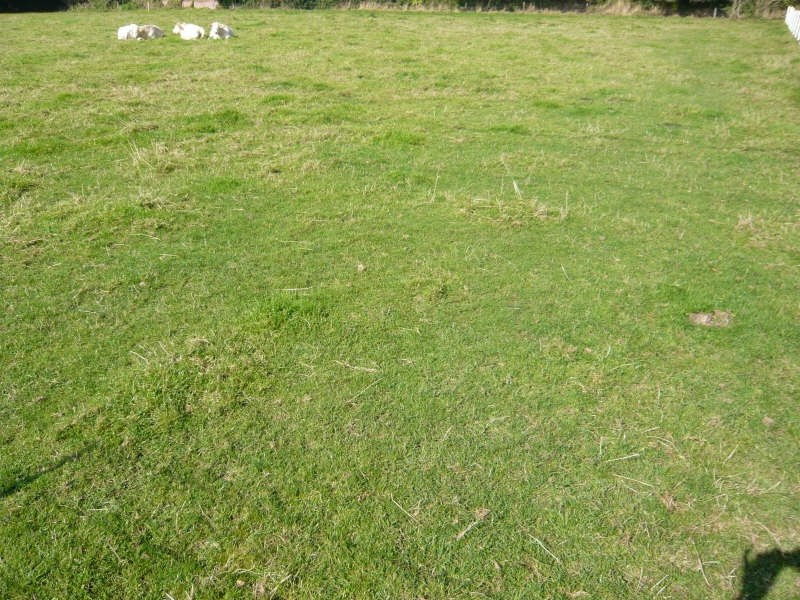 Vente terrain Fauville en caux 62000€ - Photo 1