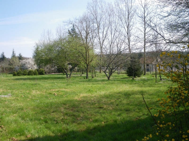Vente maison / villa Buxeuil 217300€ - Photo 10