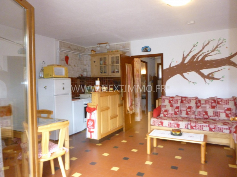 Vente appartement Valdeblore 89000€ - Photo 17