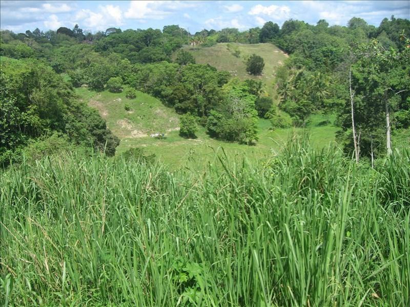 Vente terrain Le moule 471700€ - Photo 5