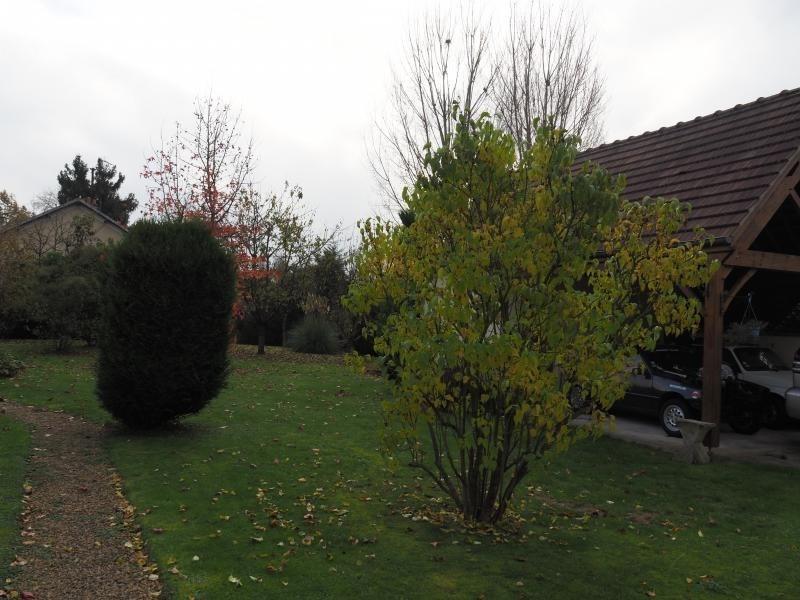 Verkauf haus Pontoise 635000€ - Fotografie 12