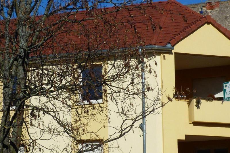 Location appartement Dijon 780€ CC - Photo 9