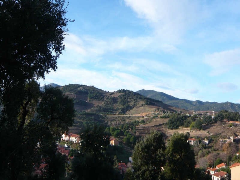 Vente terrain Collioure 199 000€ - Photo 3