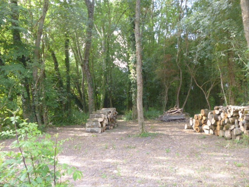 Vente terrain Montoire sur le loir 10000€ - Photo 3