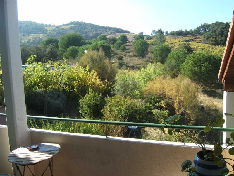 Produit d'investissement appartement Collioure 234 000€ - Photo 4