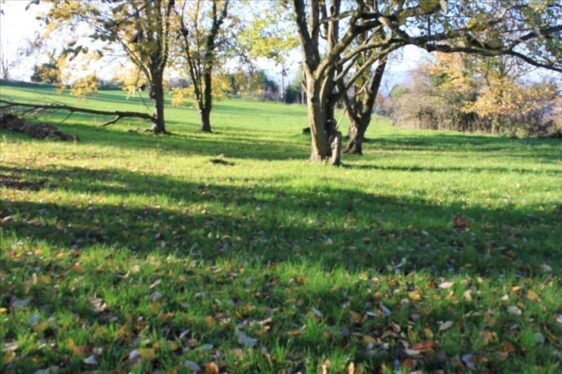 Verkoop  stukken grond Vienne 197000€ - Foto 1