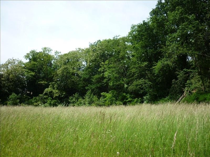 Vente terrain Mortagne au perche 56000€ - Photo 2