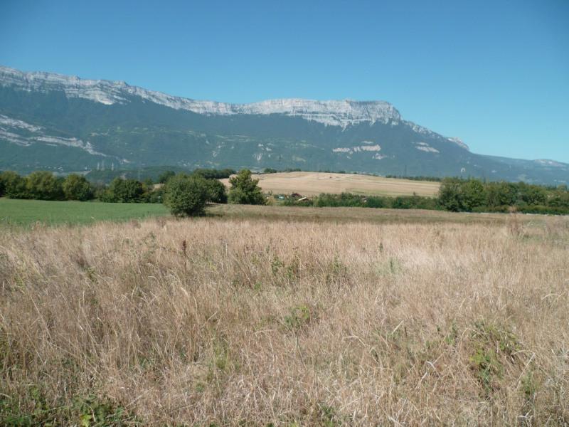 Vente terrain Champagnier 315000€ - Photo 3